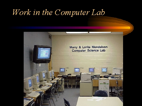Computers in Society essay?